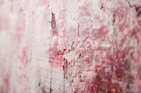 red floid dettaglio